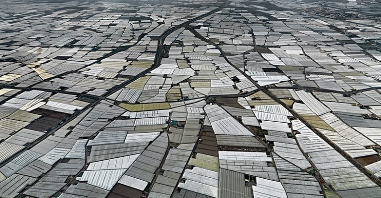 almeria's plastic greenhouses