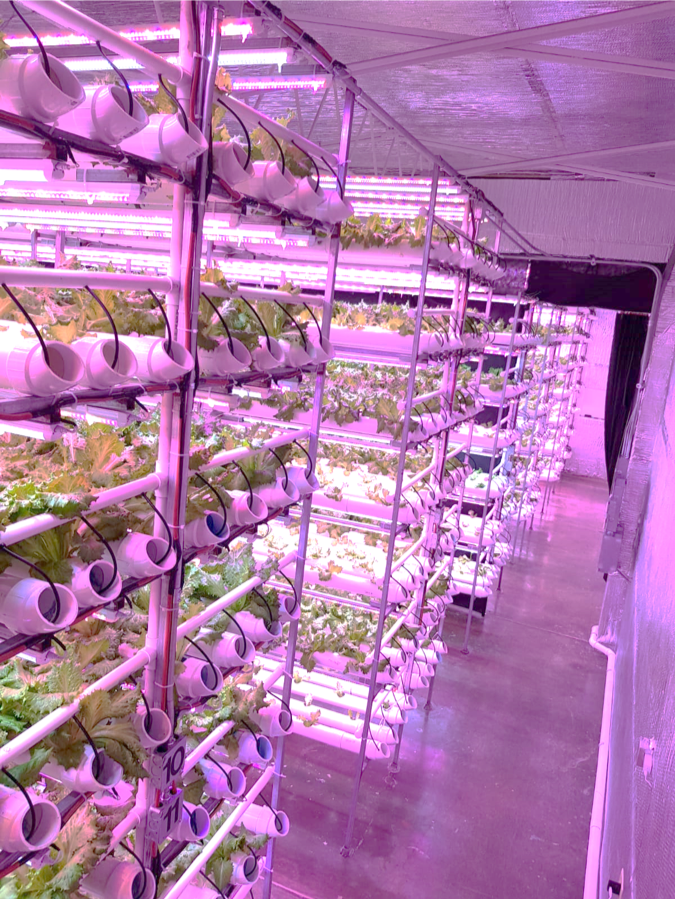 Indoor Vertical Farm Caribbean