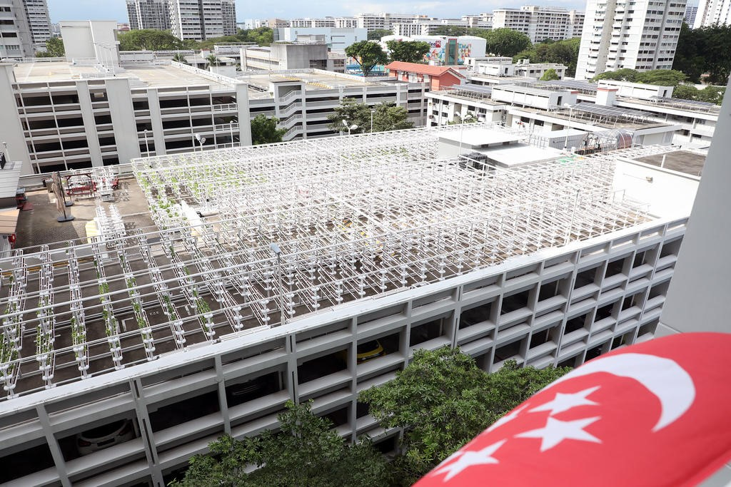 A Little History on the Most Recent Evolution of Vertical, Urban Farming in Singapore