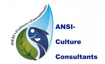 ANSI-Culture Consultants